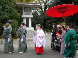 The Shinto wedding march
