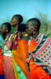 Massai Tribe Ladies