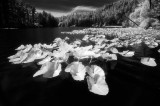 Various Infrared Photography
