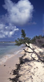 Aruba beach at the south-west corner