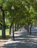 Memorial Park  2