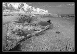 beach dead boat.jpg