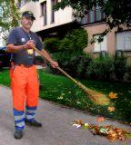 Too early to sweep autumn away...