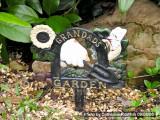 Granddad's Garden