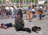 deux chiens n'écoutant pas les deux guitares