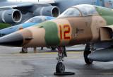 F 111 Northrop
