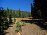 Monte's campsite and meadow