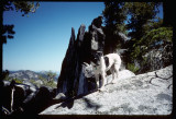 Russian Peak Climb and Pika