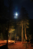 Cliff Lake camp lights