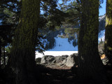 Framed view of lake