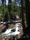Log crossing for Shackleford creek
