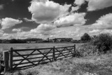 Gate & Meadow