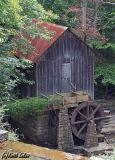 Pine Run Mill - IMG_2050 Crop.jpg