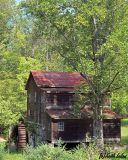 Swanns Mill - IMG_2073 Crop.jpg