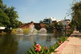 The city moat, Chiang Mai