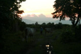 Countryside twilight near Chiang Mai