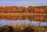 Nature  Huntley Meadows Park, Va