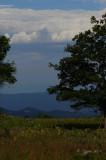 Scenic View Big Meadows NP, Va