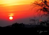 Sunrise  Shenandoah Mt, Va