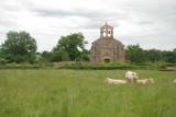 Une église et des vaches.jpg