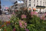 St Die station flowers 1