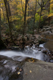Laurel Falls overlook 2