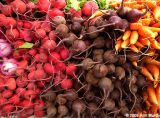 Radishes beets and carrots