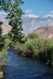 Owens River 1.JPG