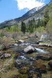 Bishop Creek 2.JPG