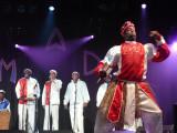 And Flamboyant Dancers