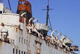 The  Duke of Lancaster  (The fun ship )