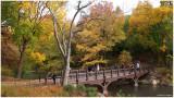 Oak Bridge Restoration