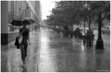 I'm Singing in the Rain