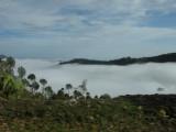 More clouds near Kasauli