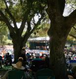 Music among the oaks