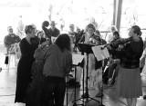 Gove County String Quartet