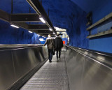 In the long blue tunnel