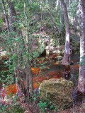 Lost Creek red water