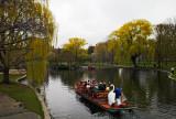 Swan boats Public Garden