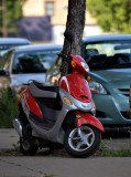 Little Red Scooter.jpg