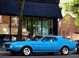 Mustang .jpg