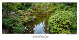 Garden Reflection Pano.jpg