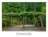 View Through The Arbor.jpg