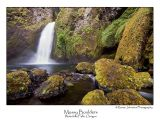 Mossy Boulders.jpg (Up To 30 x 45)