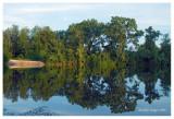 Pratts Wayne Woods Forest Preserve1, DuPage County