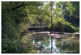 Pratts Wayne Woods Forest Preserve2, DuPage County