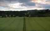 Near Oswestry Hill Fort  DSC_1811