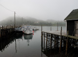 Morning fog lifts at Sandy Cove