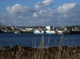 Sambro Harbor
