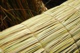 Close up of a bundle of reeds of a reed boat